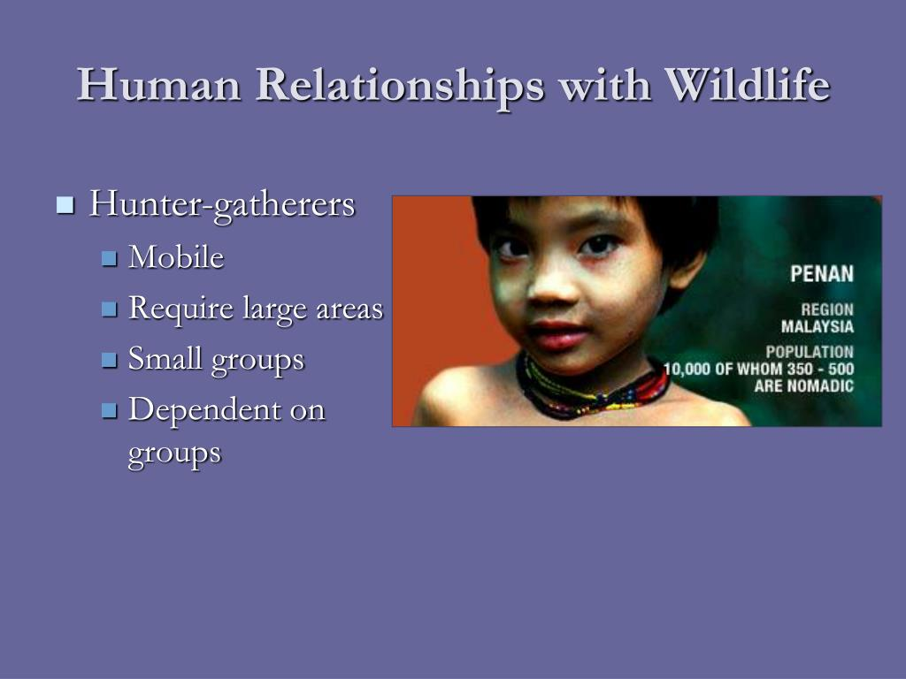 Human Relationships with Wildlife