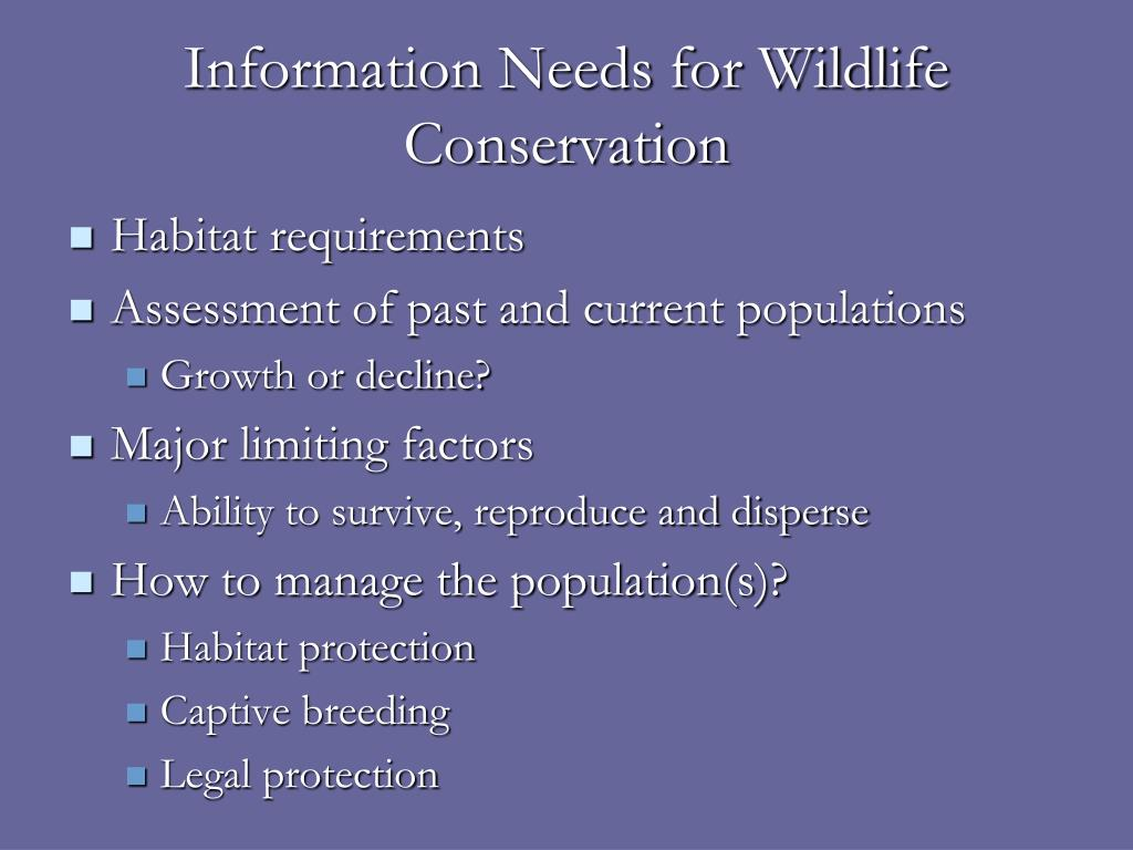 Information Needs for Wildlife Conservation