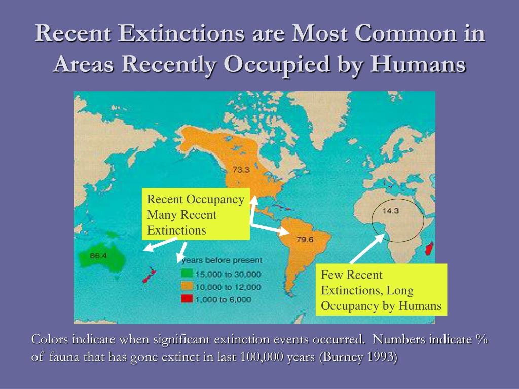 Recent Extinctions are Most Common in Areas Recently Occupied by Humans