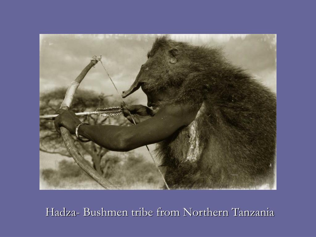 Hadza- Bushmen tribe from Northern Tanzania