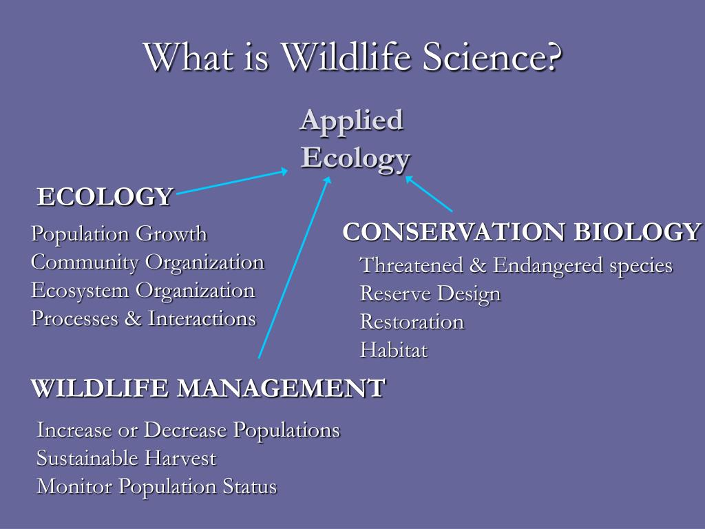 What is Wildlife Science?