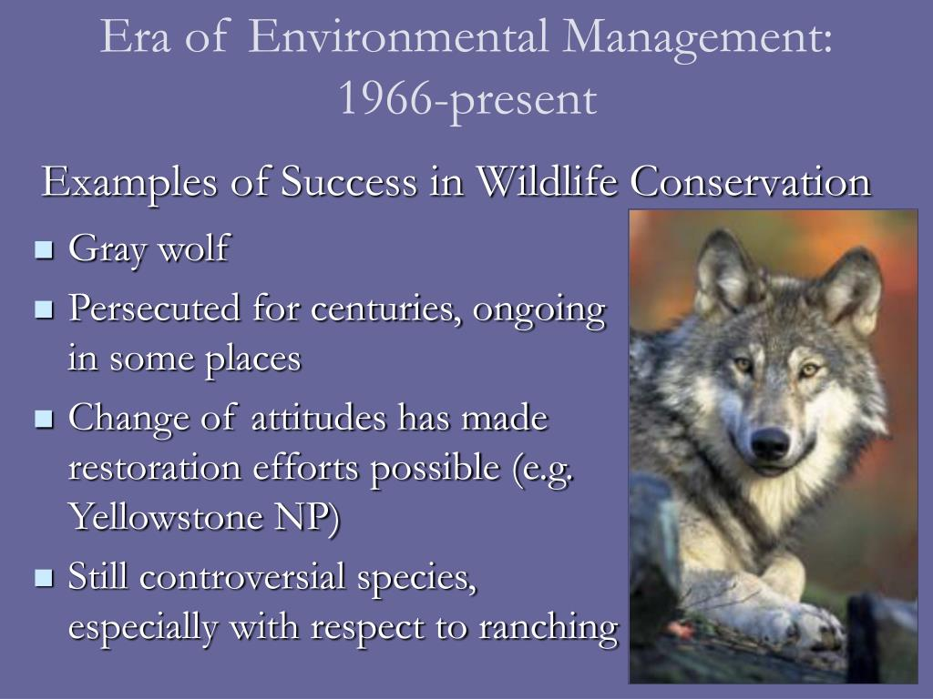 Era of Environmental Management: 1966-present