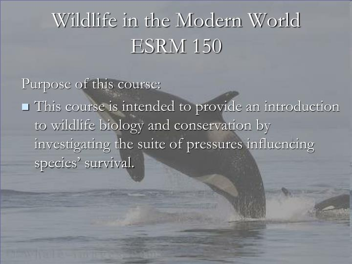 Wildlife in the modern world esrm 1502