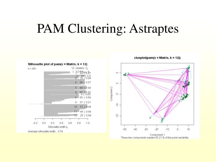 PAM Clustering: Astraptes