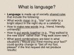 what is language
