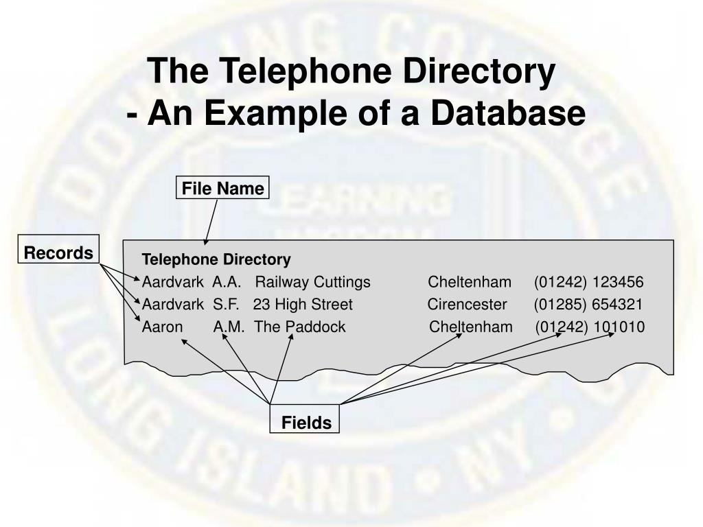 The Telephone Directory