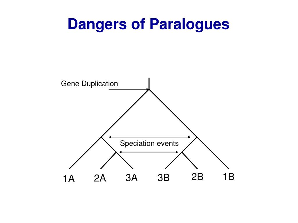 Dangers of Paralogues