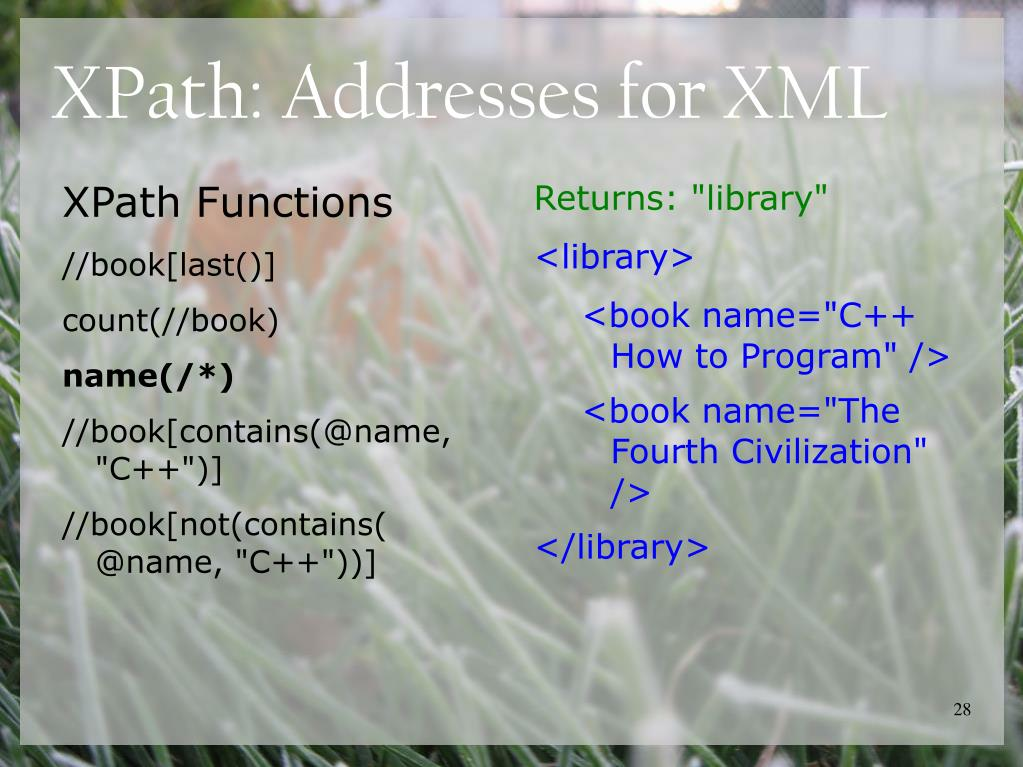 XPath: Addresses for XML