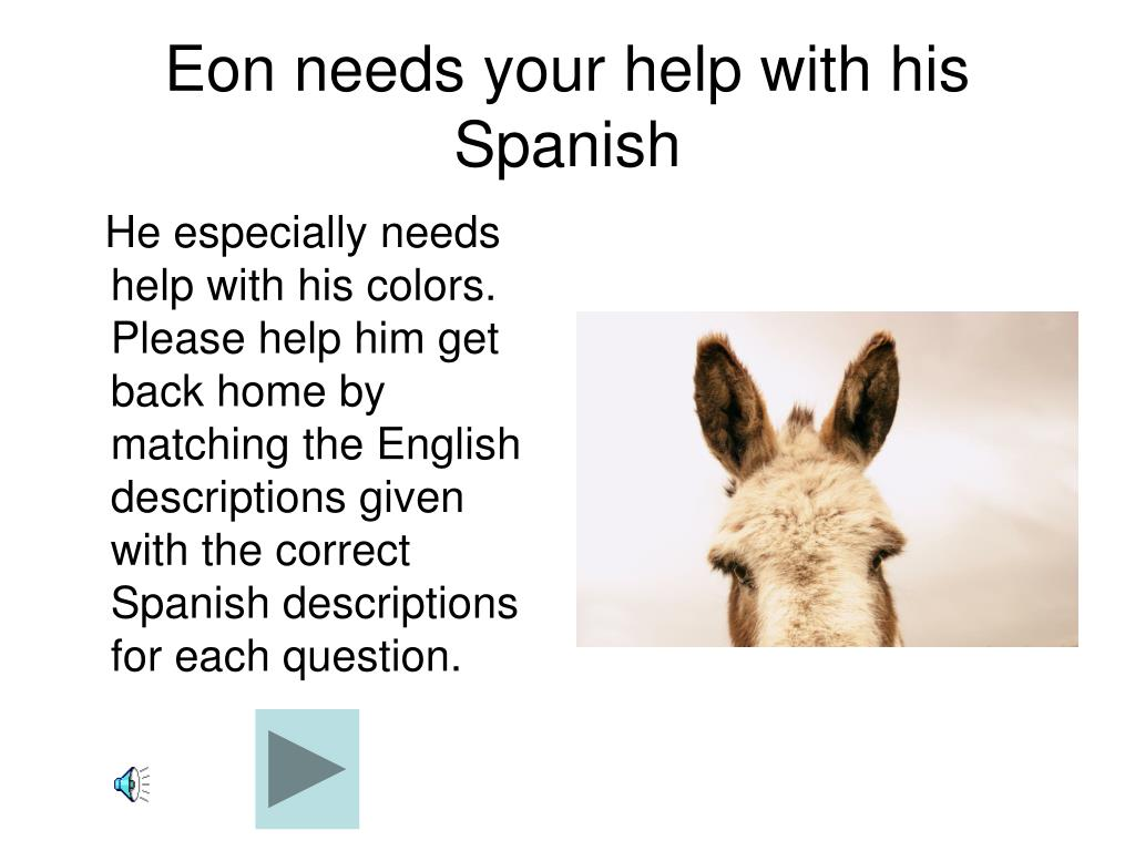 Eon needs your help with his Spanish
