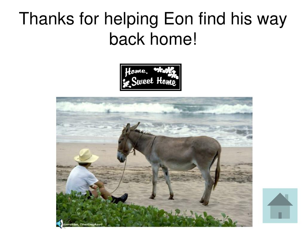 Thanks for helping Eon find his way back home!