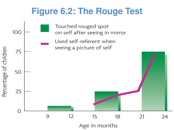 Figure 6.2: The Rouge Test