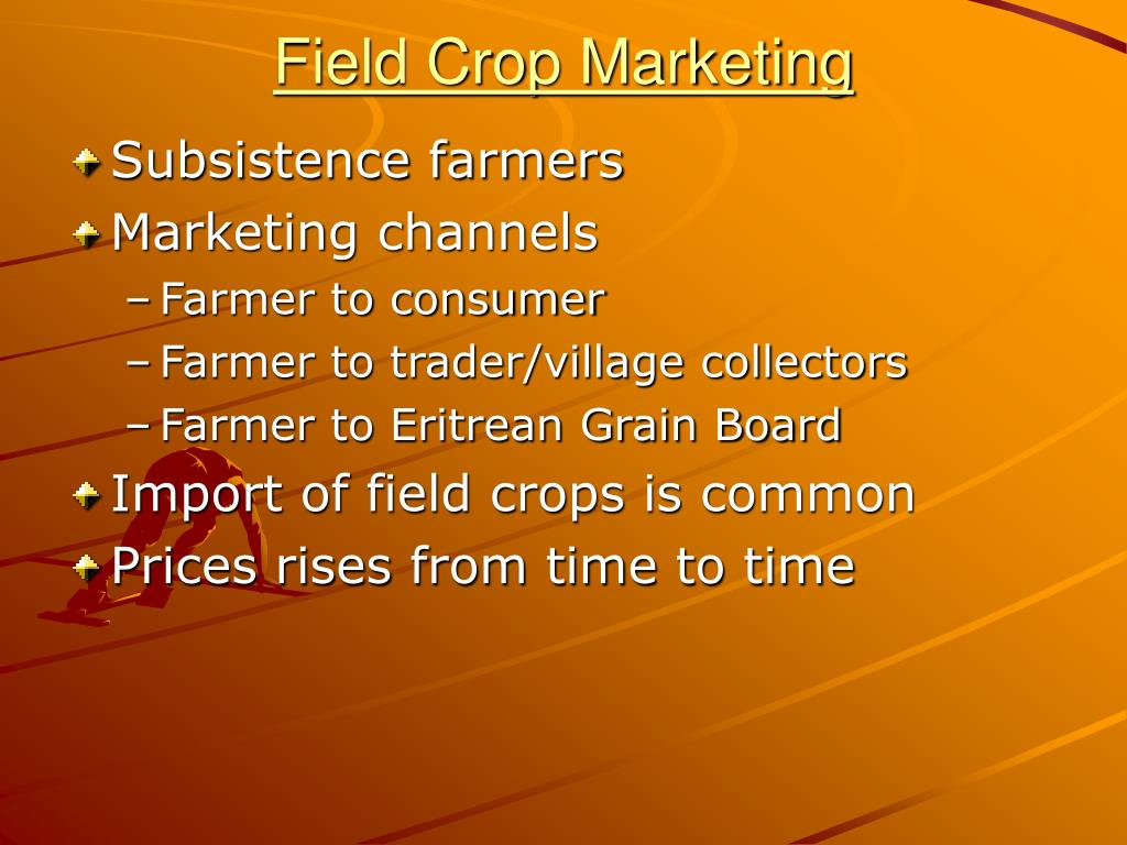 Field Crop Marketing