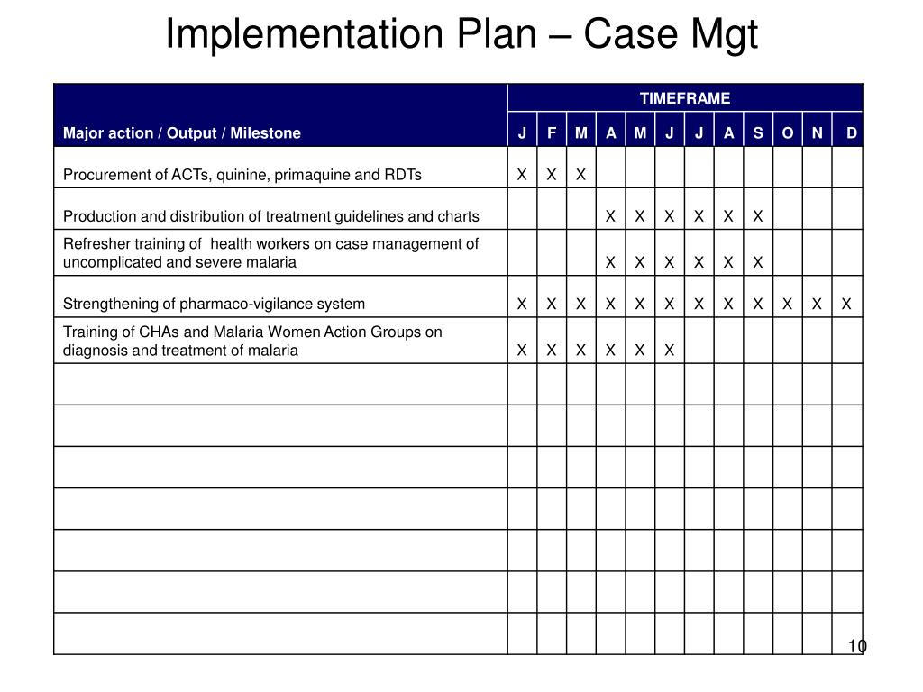 Implementation Plan – Case Mgt