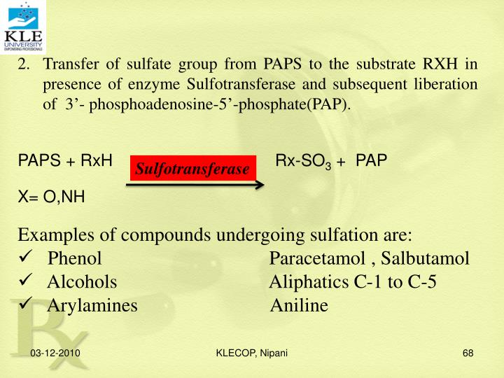 Transfer of sulfate group from PAPS to the substrate RXH in presence of enzyme Sulfotransferase and subsequent liberation of  3'- phosphoadenosine-5'-phosphate(PAP).