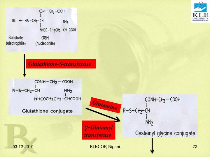 Glutathione-S-transferase