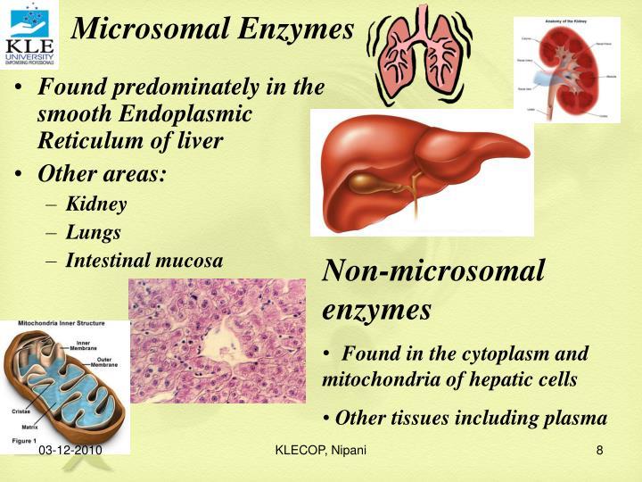 Microsomal