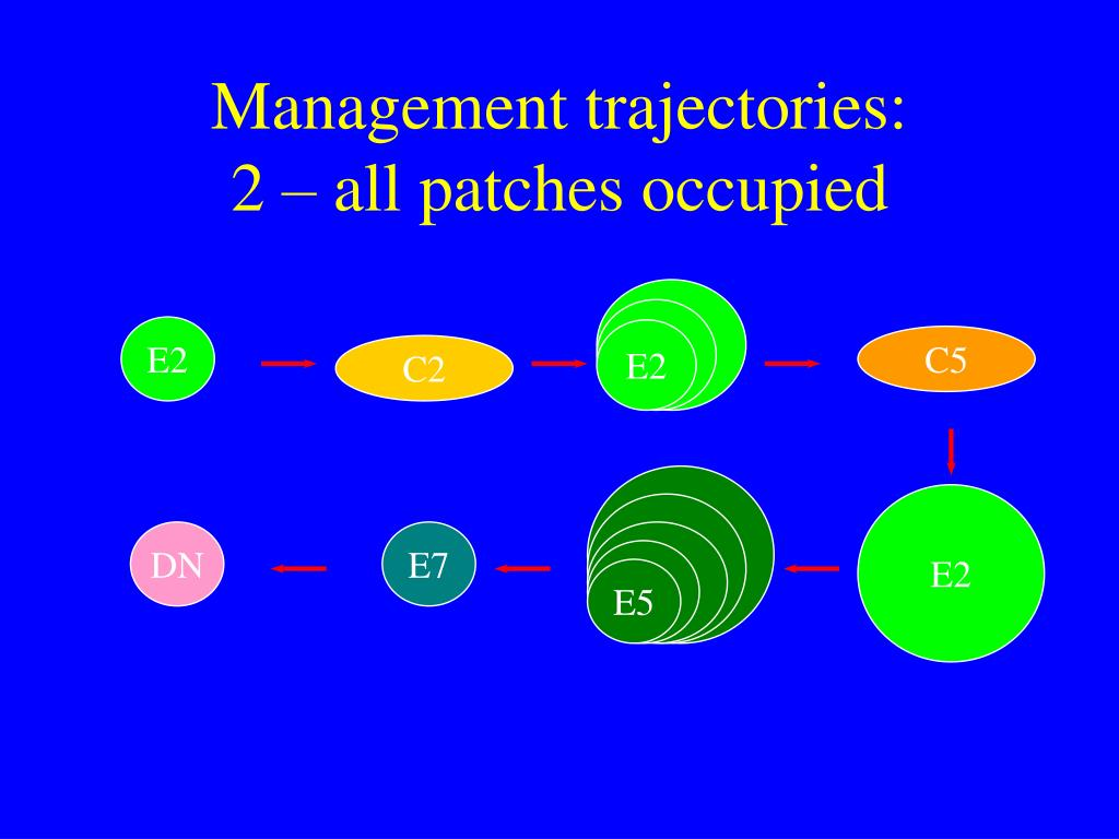 Management trajectories: