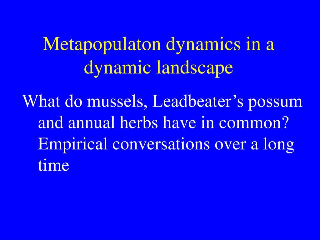 Metapopulaton dynamics in a dynamic landscape