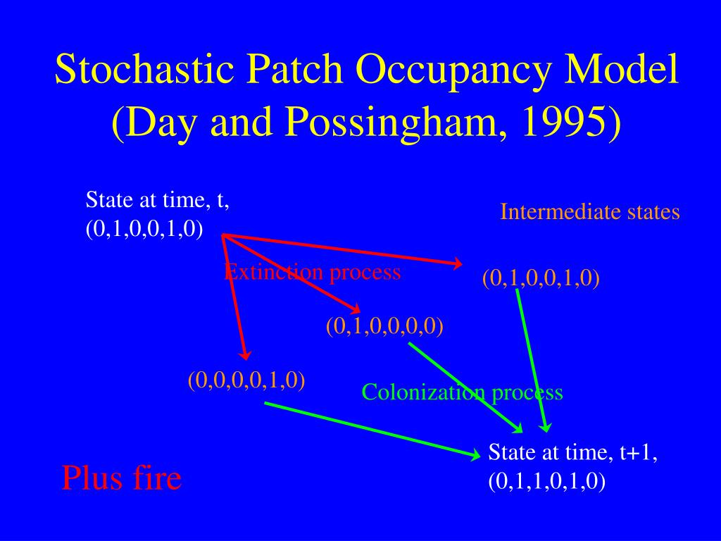 Stochastic Patch Occupancy Model