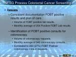 nfsg process colorectal cancer screening13