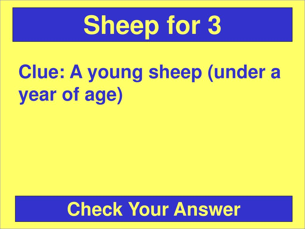 Sheep for 3