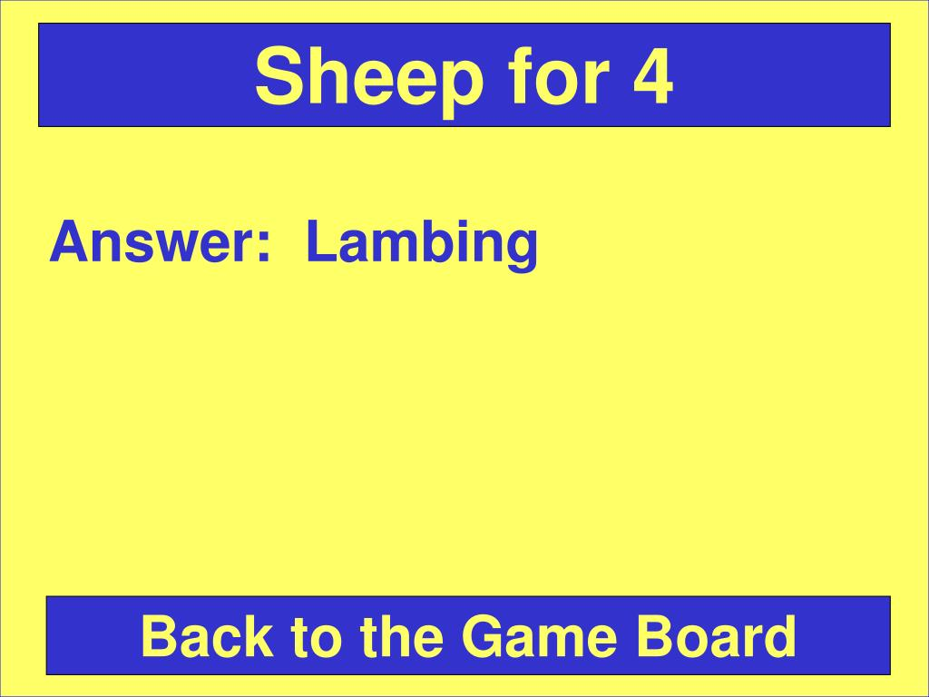 Sheep for 4
