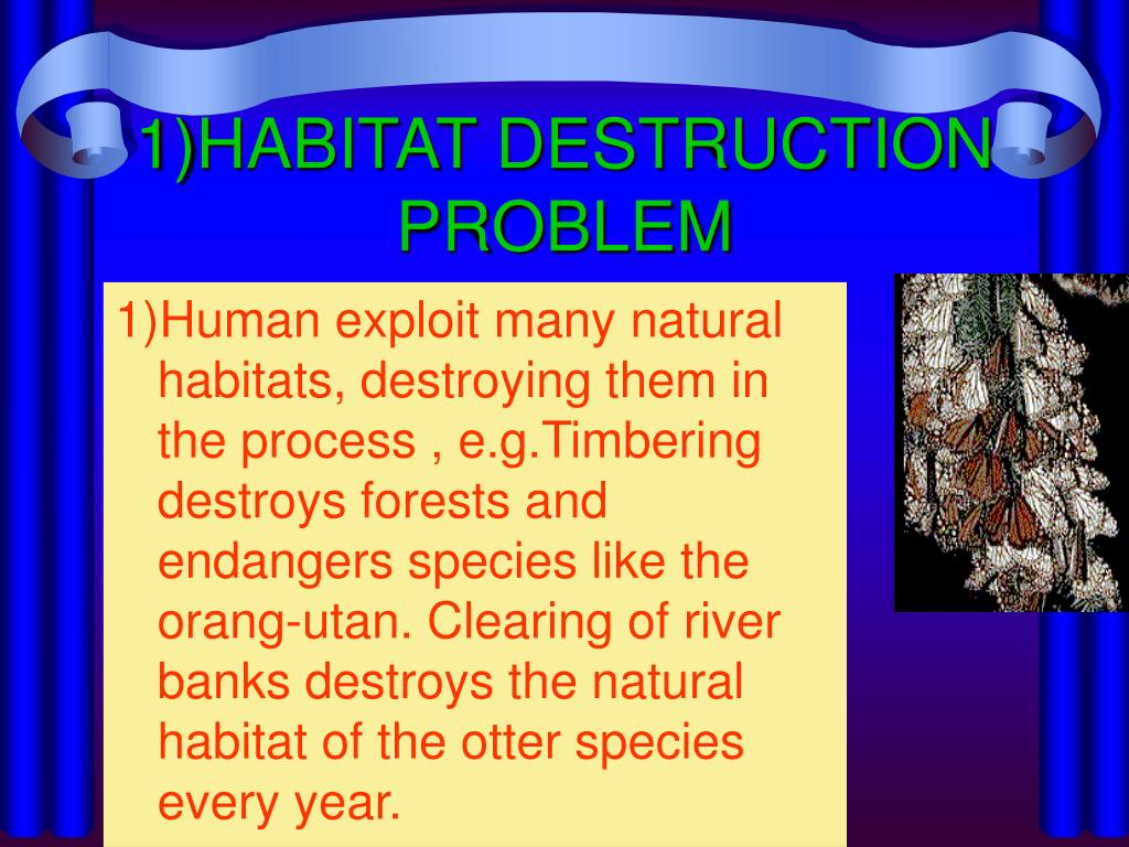 1)HABITAT DESTRUCTION PROBLEM