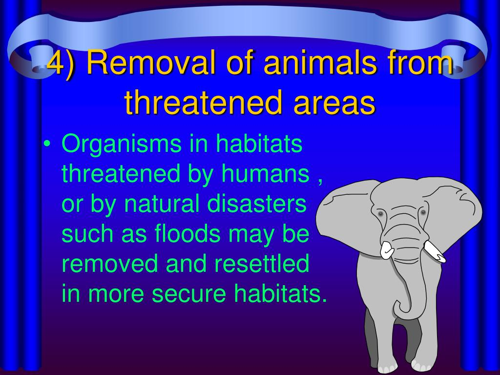 4) Removal of animals from threatened areas