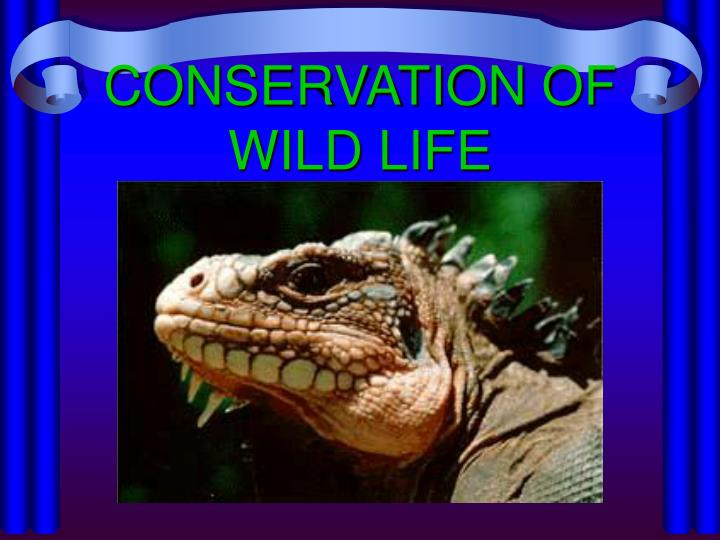 Conservation of wild life