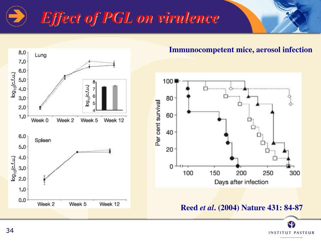 Immunocompetent mice, aerosol infection