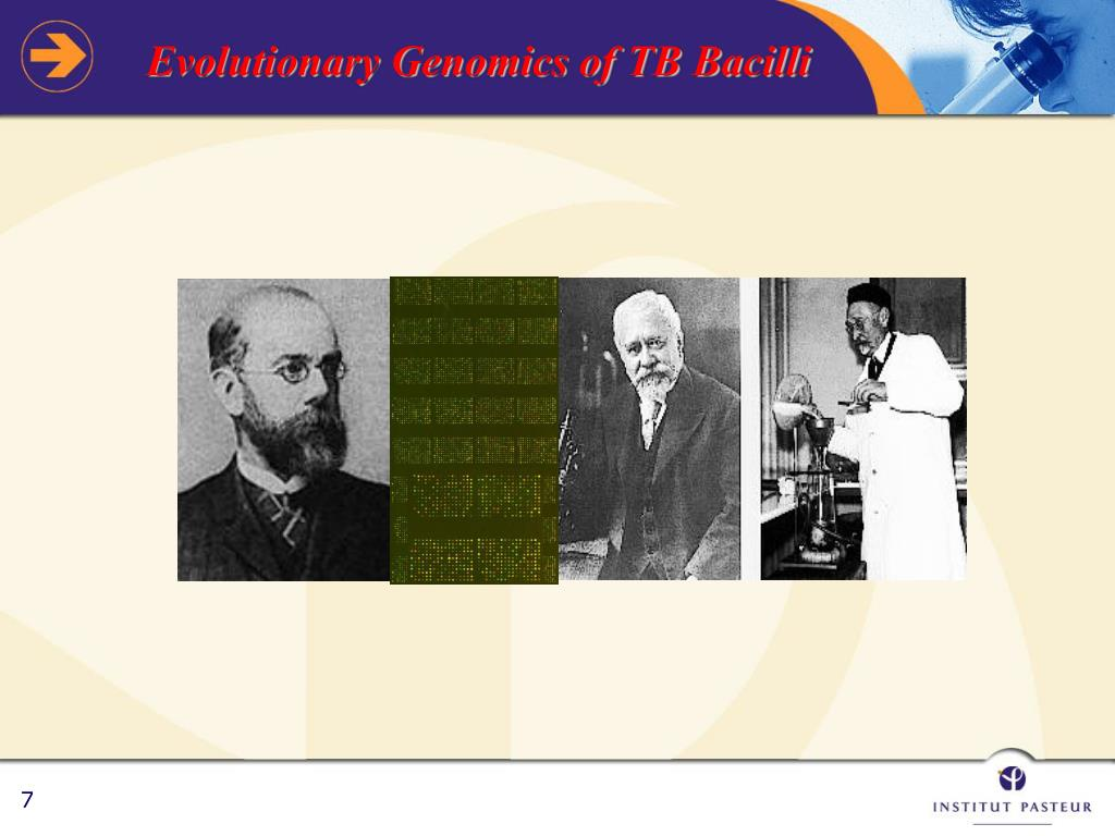 Evolutionary Genomics of TB Bacilli