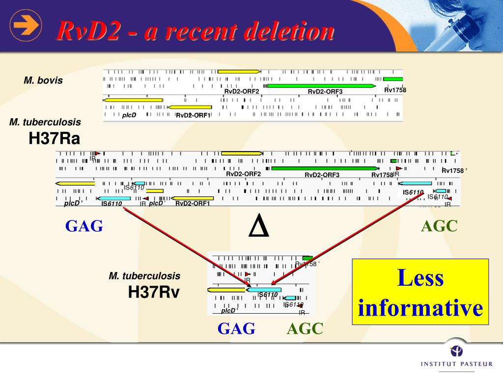 RvD2 - a recent deletion