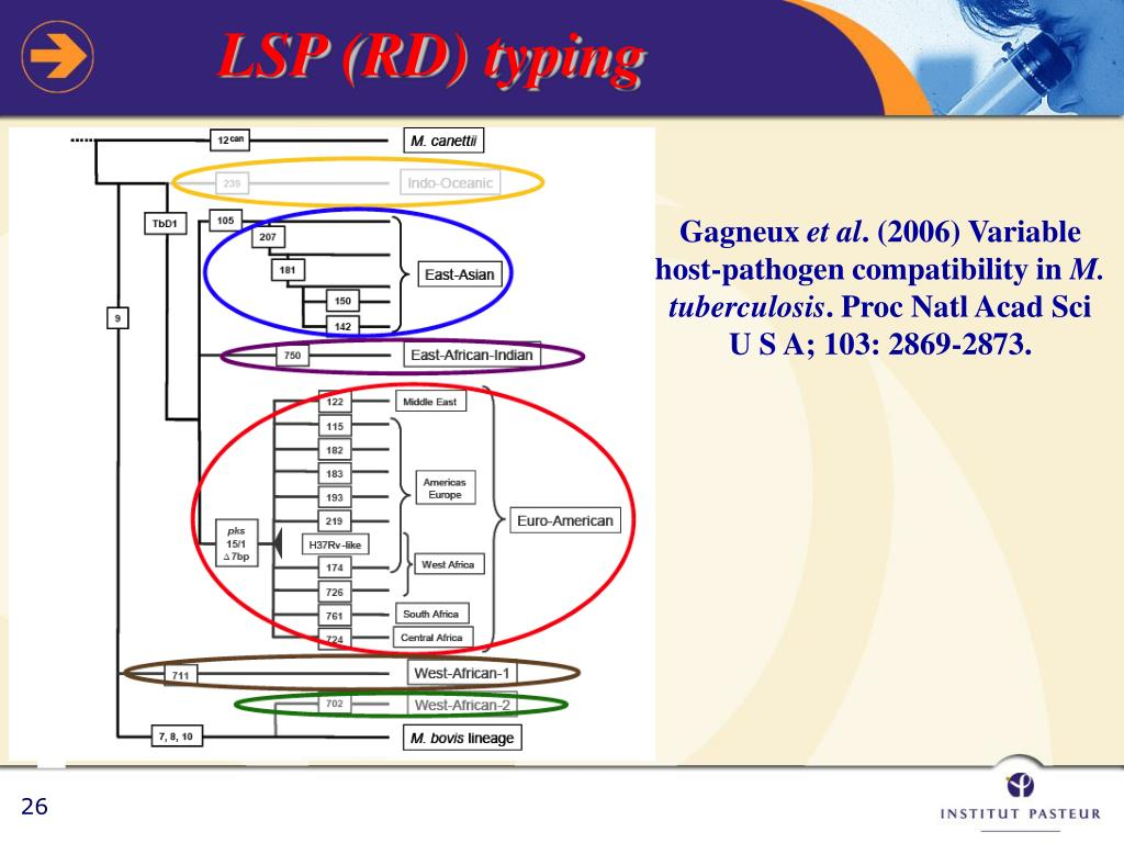 LSP (RD) typing