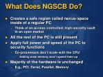 what does ngscb do