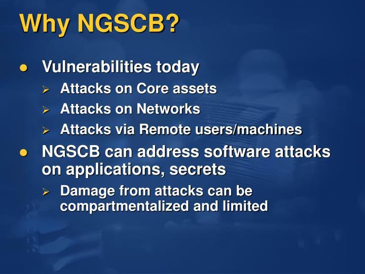 Why NGSCB?