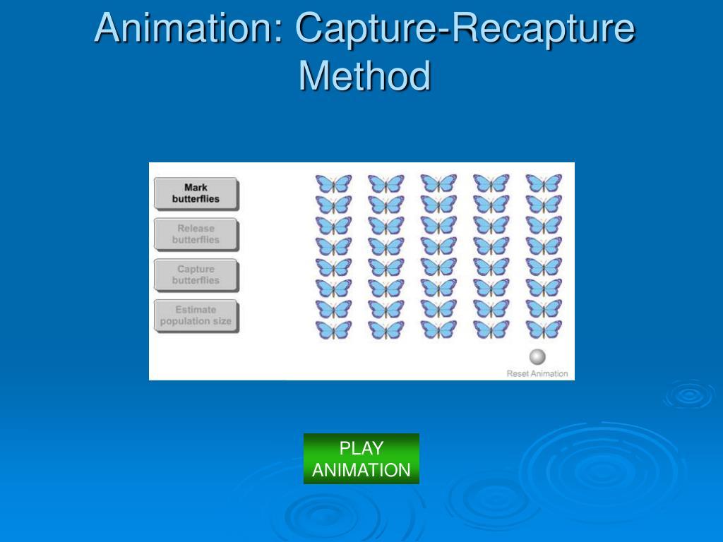 Animation: Capture-Recapture Method