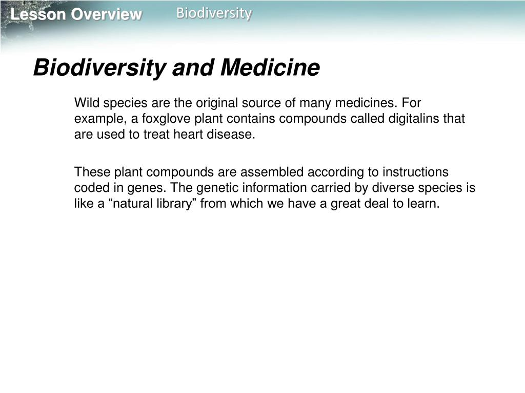 Biodiversity and Medicine