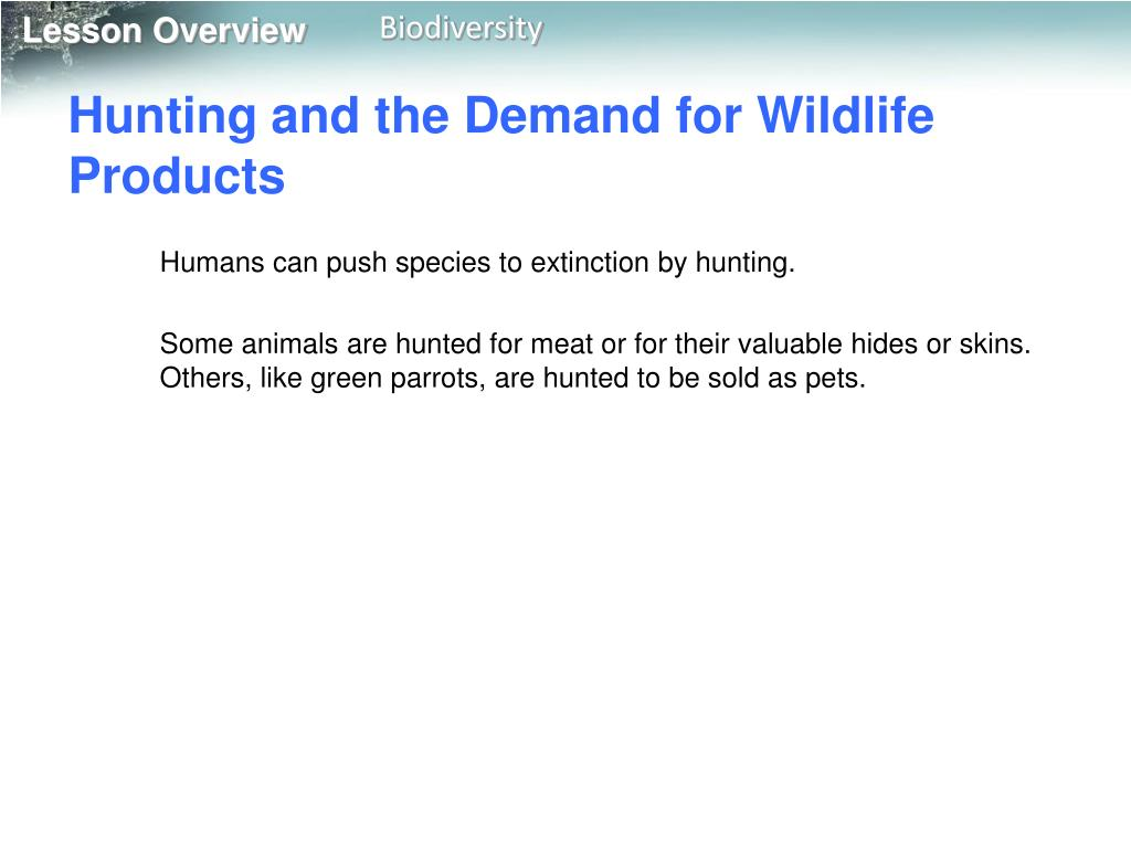 Hunting and the Demand for Wildlife Products