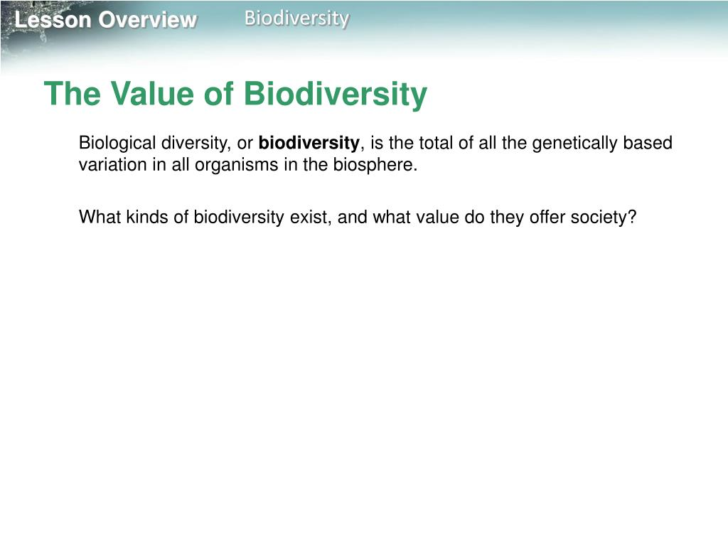 The Value of Biodiversity