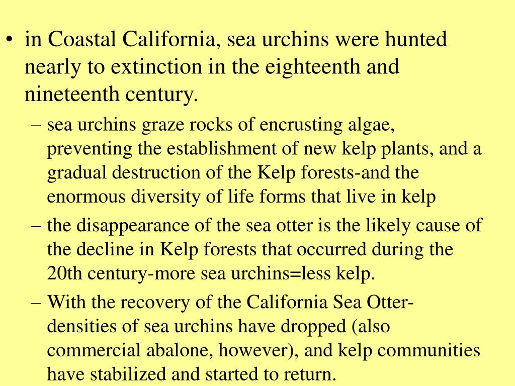 in Coastal California, sea urchins were hunted nearly to extinction in the eighteenth and nineteenth century.