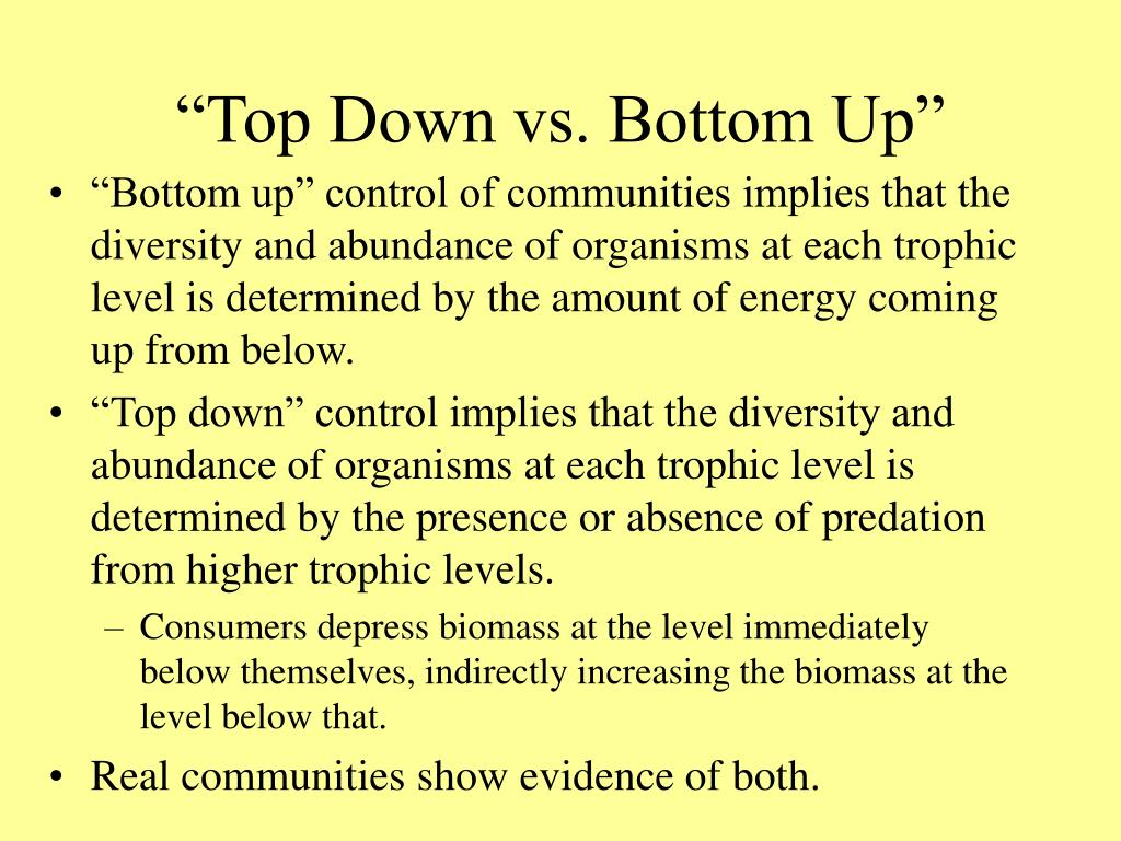 """Top Down vs. Bottom Up"""