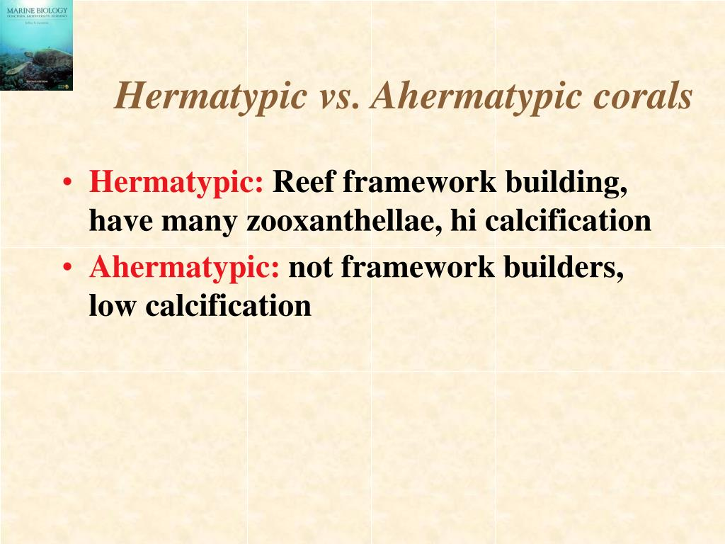 Hermatypic vs. Ahermatypic corals
