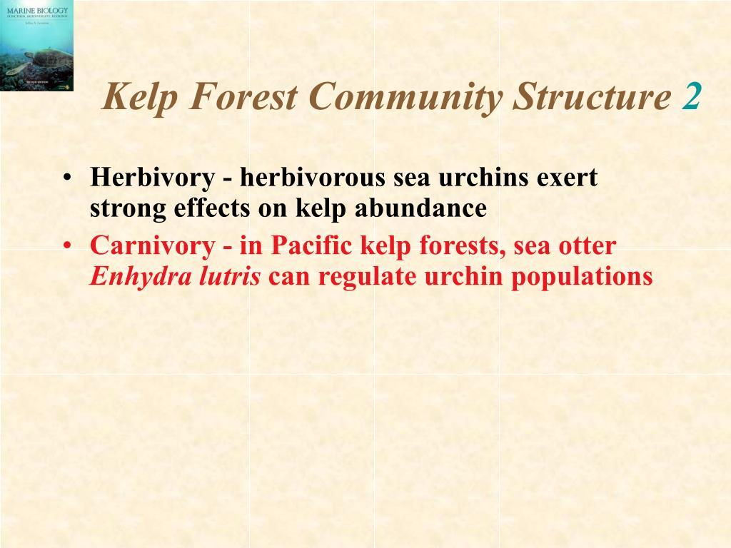 Kelp Forest Community Structure