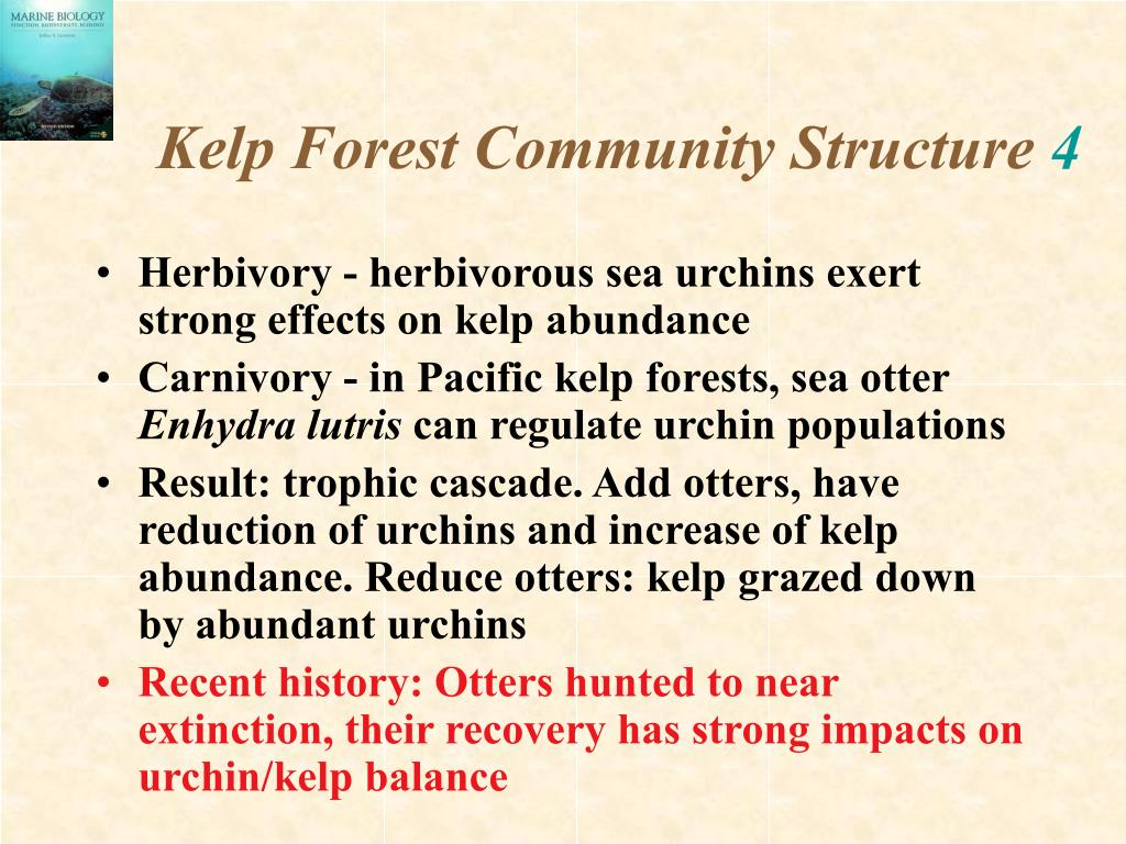 Kelp Forest Community Structure