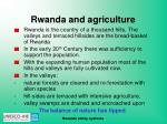 rwanda and agriculture