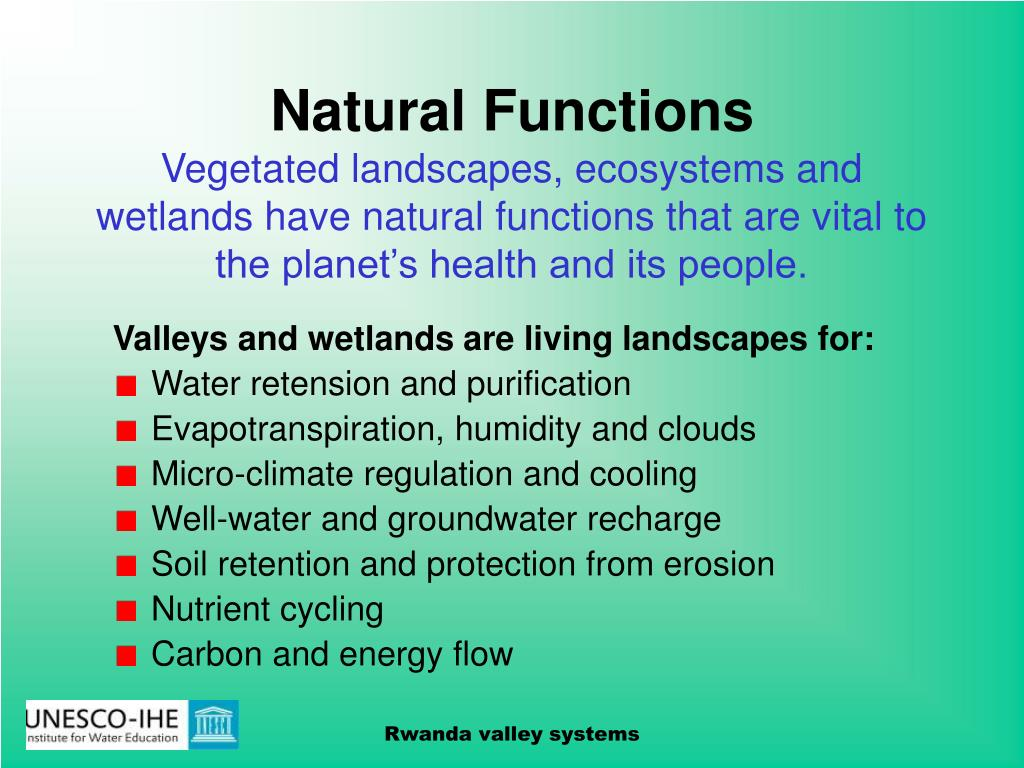 Natural Functions