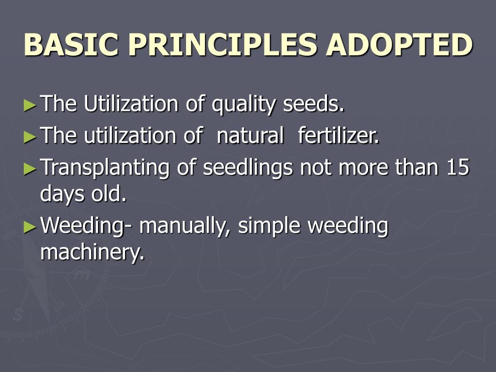 BASIC PRINCIPLES ADOPTED