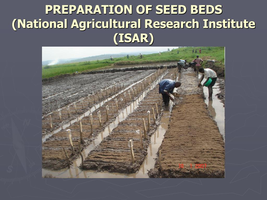 PREPARATION OF SEED BEDS