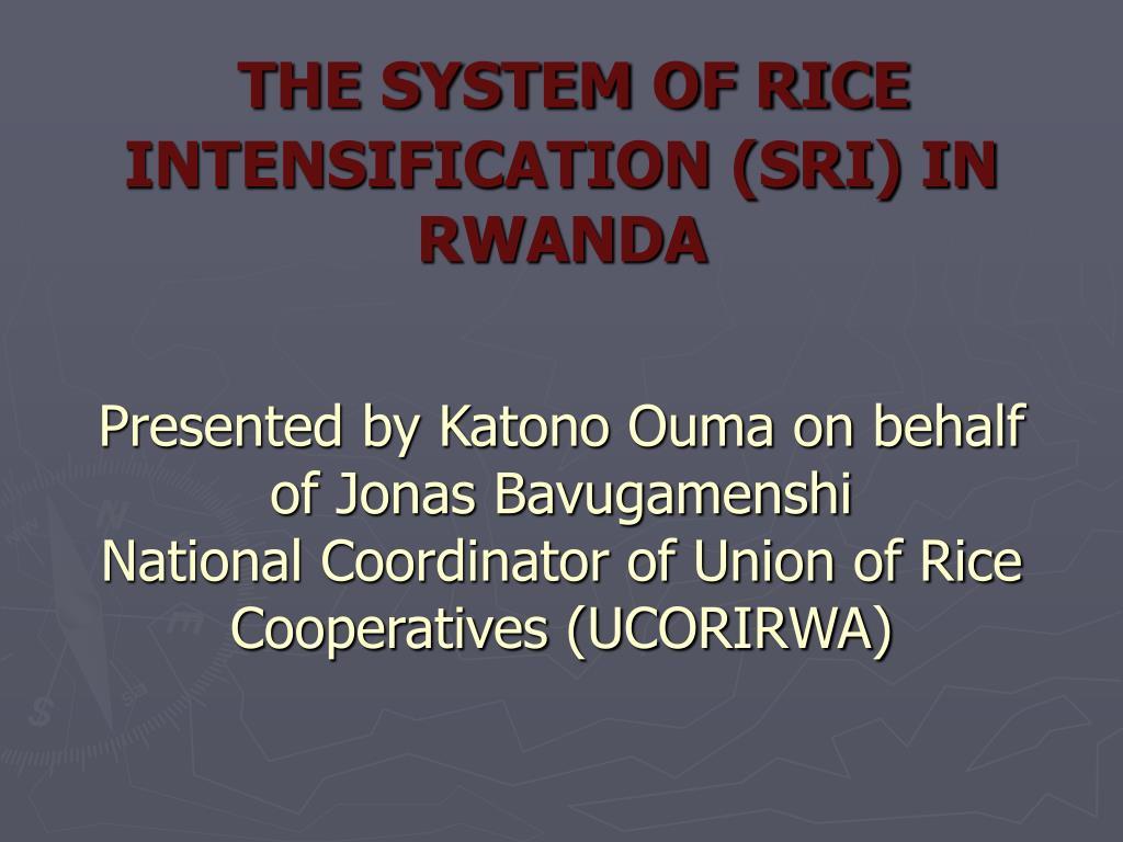 THE SYSTEM OF RICE INTENSIFICATION (SRI) IN  RWANDA