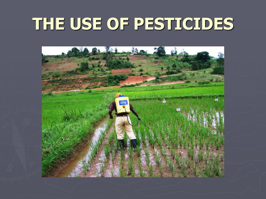 THE USE OF PESTICIDES
